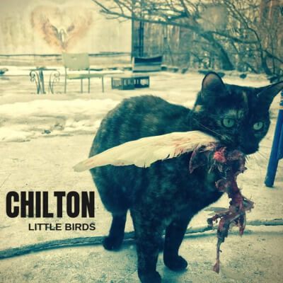 "Chilton release new song; ""Dinobirds"""
